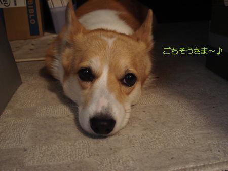 2008_0919_222350dsc03352p