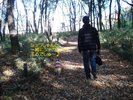 2008_1120_103738dsc03624