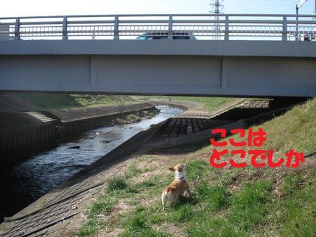 2009_0222_101838dsc03988