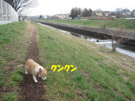 2009_0224_114039dsc03992