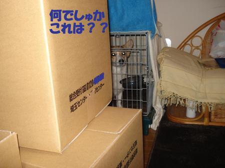 2009_0226_225059dsc04007