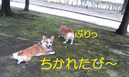 Image086